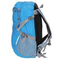 Tornistry i plecaki szkolne, Plecak szkolny 20L PCU017 4F - Niebieski