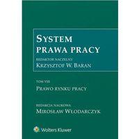 Książki prawnicze i akty prawne, System Prawa Pracy Tom 7 Prawo rynku pracy (opr. twarda)
