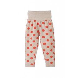 Spodnie dresowe niemowlęce 5M3311 Oferta ważna tylko do 2019-03-17