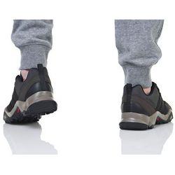 adidas Performance TERREX AX2R Obuwie hikingowe black/brown/black