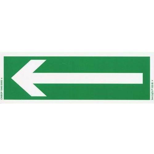 Oznakowanie informacyjne i ostrzegawcze, Znak Kierunek drogi ewakuacyjnej