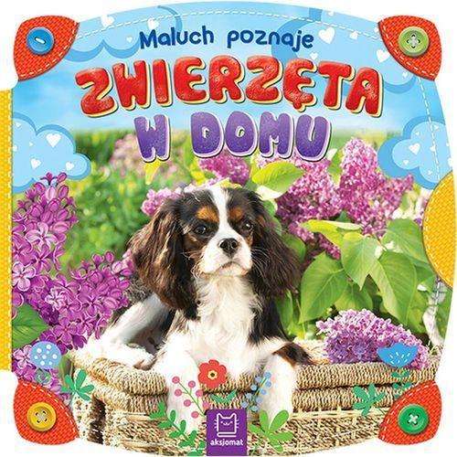 Książki dla dzieci, MALUCH POZNAJE ZWIERZĘTA W DOMU - Opracowanie zbiorowe OD 24,99zł DARMOWA DOSTAWA KIOSK RUCHU (opr. kartonowa)