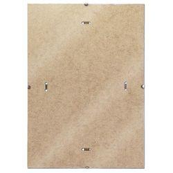 Antyrama DONAU pleksi B1, 700x1000mm