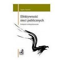 Biblioteka biznesu, Efektywność sieci publicznych. - mamy na stanie, wyślemy natychmiast (opr. miękka)