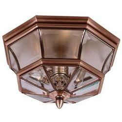 Tarasowa LAMPA wisząca NEWBURY QZ/NEWBURY8/M AC Elstead QUOIZEL ogrodowa OPRAWA zwis latarenka IP44 miedź przezroczysta