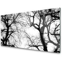 Obrazy, Obraz Szklany Drzewa Natura Czarno-Biały