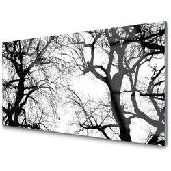 Obraz Szklany Drzewa Natura Czarno-Biały