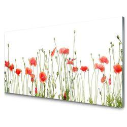 Panel Szklany Maki Roślina Natura