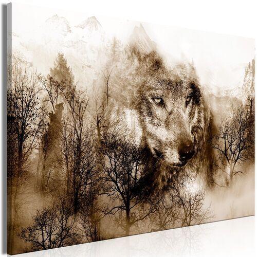 Obrazy, Obraz - Drapieżnik z gór (1-częściowy) szeroki brązowy