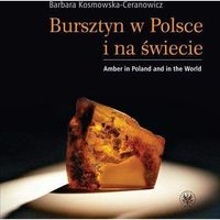 E-booki, Bursztyn w Polsce i na świecie. Amber in Poland and in the World