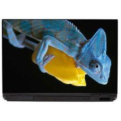 Naklejka na laptopa kameleon 0049