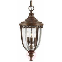 Zewnętrzna LAMPA wisząca ENGLISH BRIDLE FE/EB8/M BRB Elstead FEISS OPRAWA ogrodowa ZWIS IP23 outdoor brąz