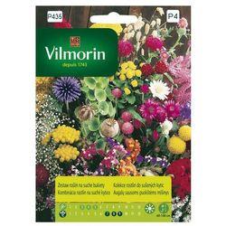 Zestaw roślin na suche bukiety Vilmorin 2g