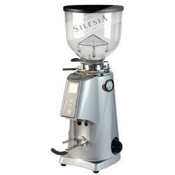 Młynek do kawy FIORENZATO F4 E NANO V2 szary