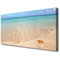 Obraz na Płótnie Plaża Rozgwiazda Krajobraz