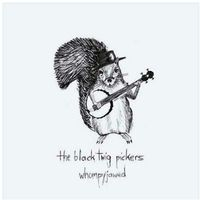 Folk, Black Twig Pickers, The - Whompyjawed