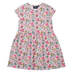 TOM TAILOR Sukienka mieszane kolory / różowy pudrowy