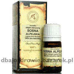 Olejek z Sosny Alpejskiej, Sosnowy, 100% Naturalny 10 ml