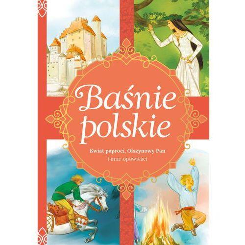 Książki dla dzieci, Baśnie polskie Kwiat paproci, Olszynowy Pan i inne opowieści