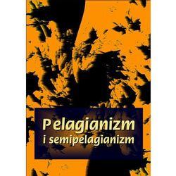 Pelagianizm i semipelagianizm. Darmowy odbiór w niemal 100 księgarniach!