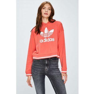 3bf24c89e34731 Bluzy damskie adidas Originals promocja 2019 - znajdz-taniej.pl