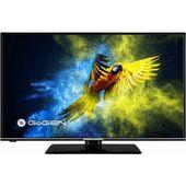 TV LED Gogen TVF 43M552