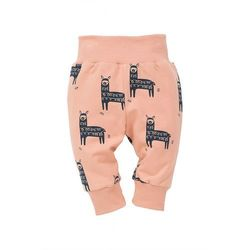 Spodnie niemowlęce 5M36AX Oferta ważna tylko do 2022-04-26