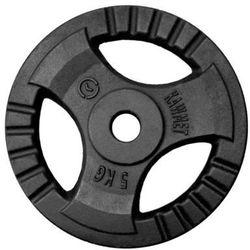 Obciążenie żeliwne do sztangi grafitowe (28,5 mm) 5 kg - 5 kg