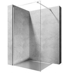 Rea Aero ścianka prysznicowa 110 cm stała szkło transparent REA-K3021