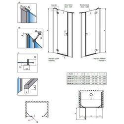 Radaway Essenza New DWJS drzwi prysznicowe 140 cm prawe i komplet 2 ścianek 385033-01-01R/384090-01-01