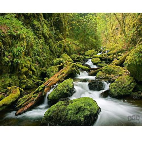 Fototapety, Fototapeta Green Canyon Cascades 909