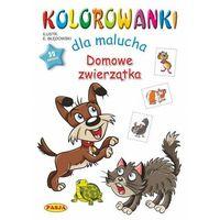 Książki dla dzieci, Domowe zwierzęta. kolorowanki dla malucha (opr. miękka)