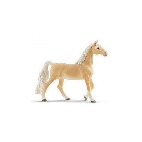 Puzzle, Klacz rasy saddlebred