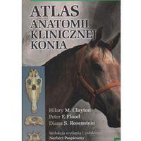 Biologia, Atlas anatomii klinicznej konia (opr. twarda)
