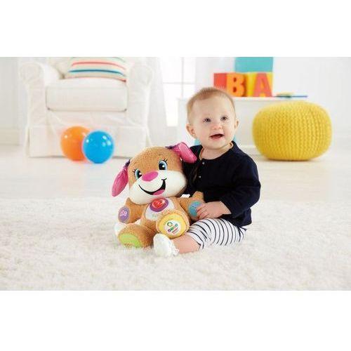 Pozostałe zabawki edukacyjne, Fisher Price Siostrzyczka Szczeniaczka Uczniaczka CJY94 - produkt w magazynie - szybka wysyłka! Oferta ważna tylko do 2018-12-12