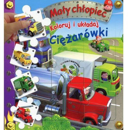 Literatura młodzieżowa, Mały chłopiec Ciężarówki. Darmowy odbiór w niemal 100 księgarniach!