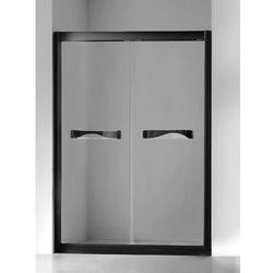 Drzwi prysznicowe rozsuwane 120 cm SCN-011 Quantum New Trendy