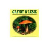 Książki dla dzieci, Grzyby w lesie (opr. kartonowa)