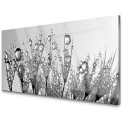 Obraz Szklany Abstrakcja Roślina Przyroda