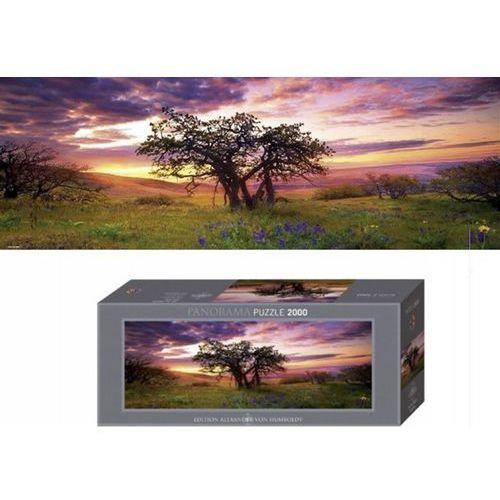 Puzzle, HEYE Puzzle Oak Treep