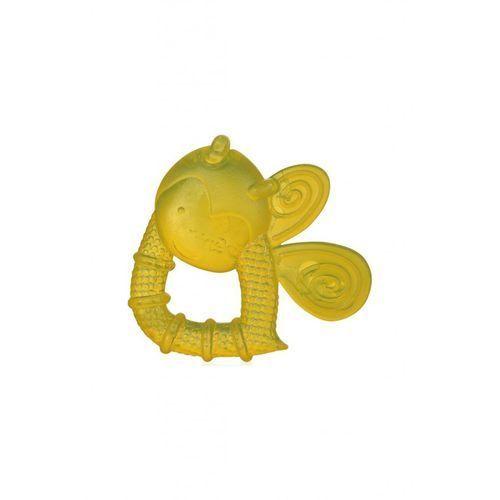 Grzechotki i gryzaki, Wodny gryzaczek Pszczółka 5O36DS Oferta ważna tylko do 2023-04-03
