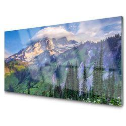 Obraz Szklany Góra Las Krajobraz Przyroda
