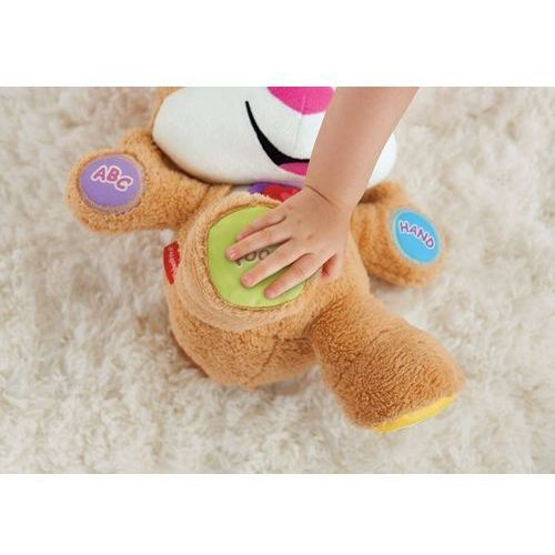 Pozostałe zabawki edukacyjne, Fisher Price Siostrzyczka Szczeniaczka Uczniaczka CJY94 - produkt w magazynie - szybka wysyłka!