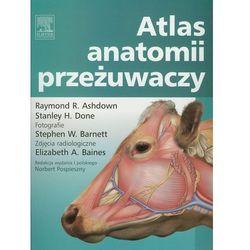 Atlas anatomii przeżuwaczy (opr. miękka)