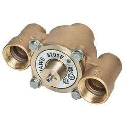 Mieszacz termostatyczny ciepłej i zimnej wody, 117 l (natrysk, myjka do o/t)