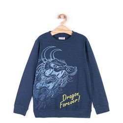 Coccodrillo - Bluza dziecięca 128-158 cm