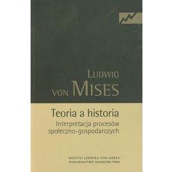 Teoria a historia (opr. miękka)