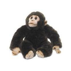 Szympans 23 cm. Darmowy odbiór w niemal 100 księgarniach!