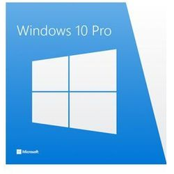 Windows 10 Professional OEM ESD