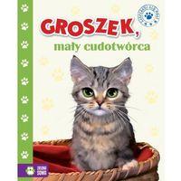 Książki dla dzieci, Groszek mały cudotwórca (opr. twarda)